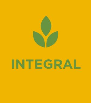 Web_Indicador Integral